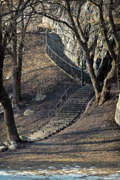 Stigbergsparken-Frans Schartaus institut